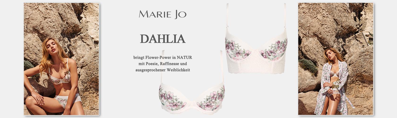 Slideshow DAHLIA 06.02.