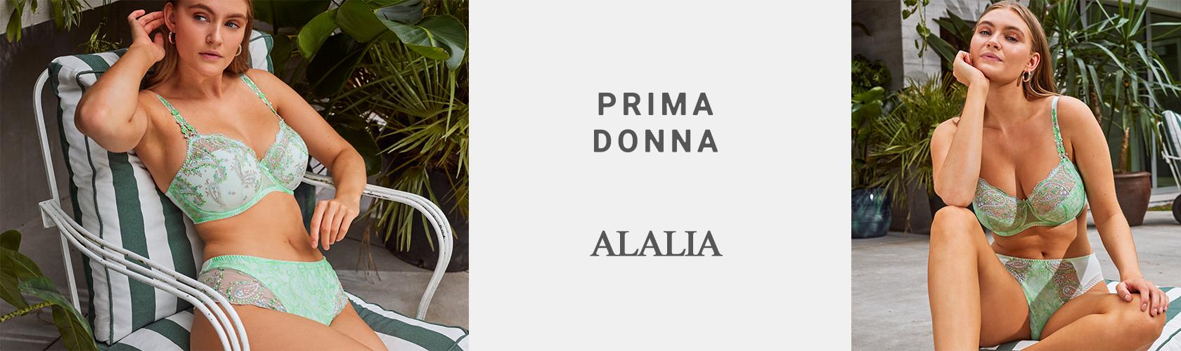 2020000946 Slideshow Alalia FDP 12.02.2021